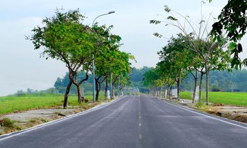 Giải mã cơn sốt gom mua đất bằng mọi giá của người Việt