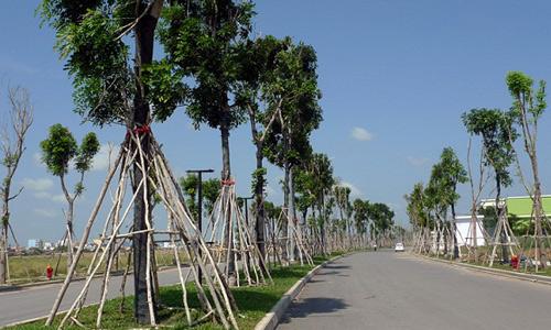 Đất phía Tây Sài Gòn tăng giá gấp đôi trong 4 tháng